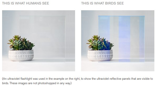 Bird Safe Ultraviolet Reflective Pattern Glass