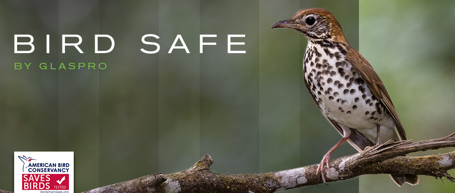 Glaspro Bird Safe Glass Line